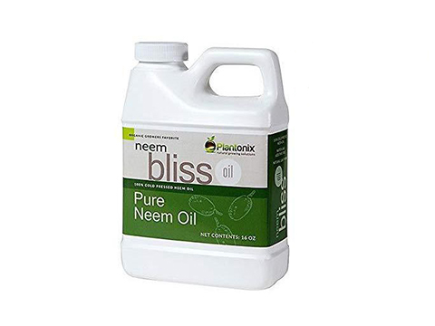 Neem Bliss Organic 100% Cold Pressed Neem Seed Oil